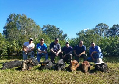 alligator-alley-outfiiters-florida-hog-hunting-min
